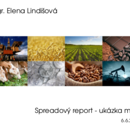 report_ukazka_icon